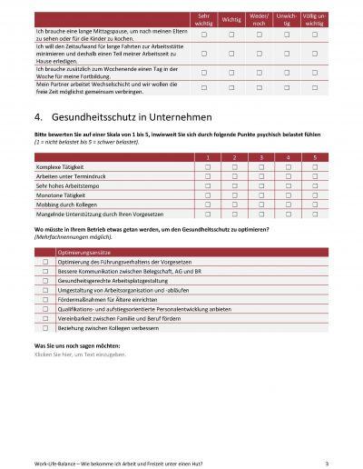 Arbeitsprobe Fragebogen_Seite_3